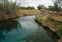 Crystal Spring, Ash Meadows National Wildlife Refuge, Nevada