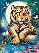 Catalea,Interlitho-Alfredo, CUTE ANIMALS, LUSTIGE TIERE, ANIMALITOS DIVERTIDOS, paintings+++++,tiger,KL4623,#ac#, EVERYDAY ,puzzle,puzzles