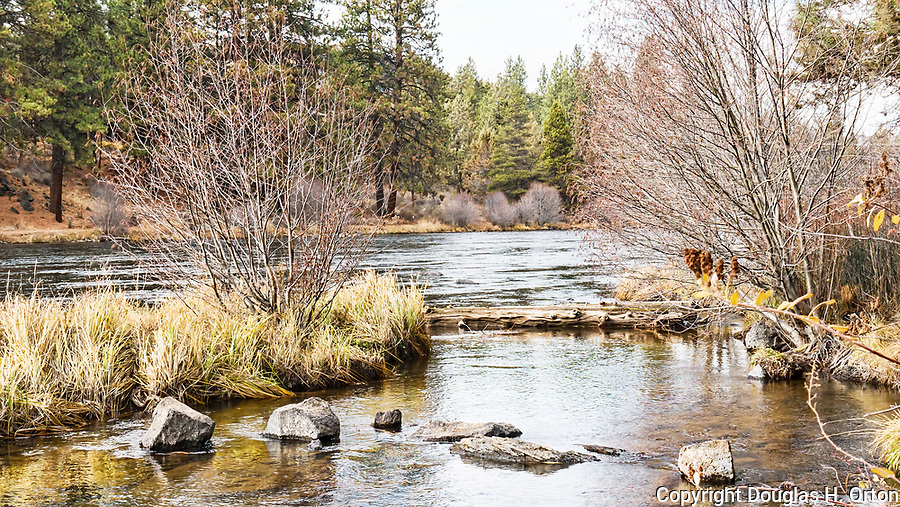 Riverbend Park, on the Deschutes River in Bend, Oregon.  Hiking, kayaking, swimming, and a wilderness feel right in town!