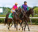 """JULY 03, 2021: Max Player, #5, ridden by Ricardo Santana Jr., wins the """"Win & You're In"""" Gr. 2 Suburban Stakes, going 1 1/4  mile, at Belmont Park in Elmont, New York. Sue Kawczynski/Eclipse Sportswire/CSM"""