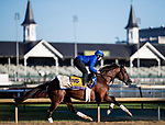 October 29, 2018 : Thunder Snow (IRE), trained by Saeed bin Suroor, exercises in preparation for the Breeders' Cup Classic at Churchill Downs on October 29, 2018 in Louisville, Kentucky. Evers/ESW/CSM