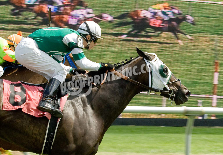 Cajole winning at Delaware Park on 7/4/09