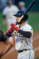 Jared Walsh (18) of the Salt Lake Bees at bat against the Oklahoma City Dodgers at Smith's Ballpark on July 31, 2019 in Salt Lake City, Utah. The Dodgers defeated the Bees 5-3. (Stephen Smith/Four Seam Images)