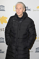 """JANE GOODALL - AVANT-PREMIERE DU FILM """"JANE"""" A L'UNESCO, PARIS, FRANCE, LE 19/01/2018."""