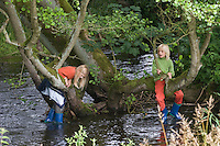 Junge und Mädchen spielen am Bach und klettern an alter Erle