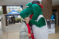 "A fan simply known as ""Grandma"" has her head bitten by Kannapolis Intimidators mascot ""Tim E. Gator"" prior to the game against the Lakewood BlueClaws at Kannapolis Intimidators Stadium on April 6, 2017 in Kannapolis, North Carolina.  The BlueClaws defeated the Intimidators 7-5.  (Brian Westerholt/Four Seam Images)"