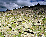 """Carn Menyn, Prescelly Presceli Mountains, Nr Crymych Pembrokshire Wales. Celtic Britain published by Orion. Frost shatered rocks are called """"Blue Stones""""  or Bluestones and were taken from here to build Stonehenge on Salisbury Plain."""