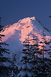 The setting sun reflects from the western face of Mt. Hood, Oregon