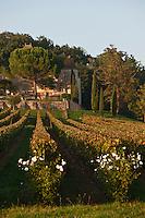 Europe/Europe/France/Midi-Pyrénées/46/Lot/Luzech: Château de Caix -  AOC Cahors [Non destiné à un usage publicitaire - Not intended for an advertising use]