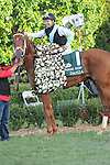 April 12, 2014: #1 Danza with jockey Joe Bravo aboard at the Arkansas Derby at Oaklawn Park in Hot Springs, AR. Zoie Clift/ESW/CSM
