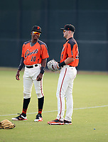 Marco Luciano (left), Hunter Bishop (right) - 2019 AZL Giants (Bill Mitchell)