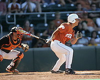 Texas Longhorns 2B Michael Torres  breaks UT's hit streak record during the 2008 season. Photo by Andrew Woolley / Four Seam Images.
