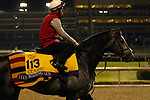 October 30, 2018 : Roaring Lion at Churchill Downs on October 30, 2018  in Louisville, Kentucky in preparation for the Breeders' Cup Classic. Mary M. Meek/ESW/CSM