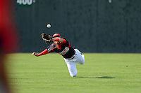 Batavia Muckdogs outfielder Yefri Perez (12) dives in an attempt to catch a fly ball during a game against the State College Spikes on July 28, 2013 at Dwyer Stadium in Batavia, New York.  Batavia defeated State College 10-5.  (Mike Janes/Four Seam Images)