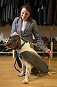 """Hannah Lancashire measuring-up Chester.<br /> <br /> Everyone loves dressing up for a wedding and now it seems even our pooches are getting in on the glamour action. <br /> <br /> Made to measure, and from the same material as the bridegroom's attire, could matching dogs' waistcoats and suits this be this year's biggest wedding trend?<br /> <br /> Of course, dressing up our four-legged friends is nothing new, there are plenty of options for dog coats, fancy dress and even pyjamas, but an enterprising business owner from Derby claims to have spotted a gap in the market for bespoke canine wedding suits.<br /> <br /> It was the brainwave of 34-year-old Hannah Lancashire, owner of Jon Paul Formal Hire, who was looking for a quirky way to attract people to her stand at a wedding fair.<br /> <br /> She said she came up with the idea to dress a toy dog in a shirt, waistcoat and jacket, in the hope that potential clients would find it amusing and stop to find out more.<br /> <br /> """"In the end,"""" she said, """"we had more than 200 enquiries from that fair alone, from people wanting to include their dog in the wedding party.<br /> <br /> """"So we looked into the idea, and joined forces with Albert and Belle in Swadlincote, who specialise in making dog coats, to create a whole wedding package.<br /> <br /> """"And all the dog suits are hand-made, to the pooch's exact measurements and in the same material as the groom's suit and waistcoat, so the whole wedding party is coordinated and keeps to the same colour theme.""""<br /> <br /> It might seem like a barking mad idea, but Brits have a reputation for being a nation of dog-lovers, so why should our beloved mutts, who are often a huge part of family life, miss out on such a special occasion?<br /> <br /> All Rights Reserved: F Stop Press Ltd. +44(0)1335 418365   www.fstoppress.com"""