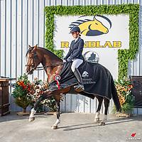 CCN105-S: 2021 NZL-RANDLAB Matamata Horse Trial