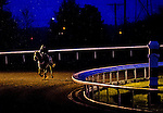 October 26, 2015 : Scenes from the early morning workouts as horses exercise in preparation for the Breeders' Cup in Lexington, Kentucky. Scott Serio/ESW/CSM