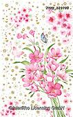 Isabella, FLOWERS, BLUMEN, FLORES, paintings+++++,ITKE029785,#f#, EVERYDAY