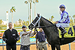 07 February 2010:  Phola with jockey Javier Castellano and trainer Todd Pletlher wins the Sixth race at Gulfstream Park in Hallandale Beach, FL.