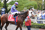 Hailstone, ridden by Julien Leparoux, runs in the Joe Hirsch Turf Classic Invitational Stakes (GI) at Belmont Park in Elmont, New York on September 29, 2012.  (Bob Mayberger/Eclipse Sportswire)