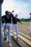 Batavia Muckdogs Igor Baez (6) celebrates with Peyton Burdick (7) during a NY-Penn League game against the Auburn Doubledays on June 19, 2019 at Dwyer Stadium in Batavia, New York.  Batavia defeated Auburn 5-4 in eleven innings in the completion of a game originally started on June 15th that was postponed due to inclement weather.  (Mike Janes/Four Seam Images)
