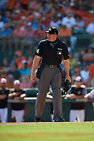 Home plate umpire John Libka during a Grapefruit League Spring Training game between the Detroit Tigers and the Baltimore Orioles on March 3, 2019 at Ed Smith Stadium in Sarasota, Florida.  Baltimore defeated Detroit 7-5.  (Mike Janes/Four Seam Images)