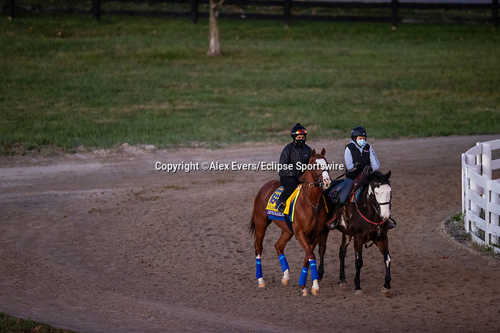 November 4, 2020: Improbable, trained by trainer Bob Baffert, exercises in preparation for the Breeders' Cup Classic at  Keeneland Racetrack in Lexington, Kentucky on November 4, 2020. Alex Evers/Eclipse Sportswire/Breeders Cup