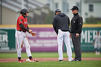 Erie SeaWolves manager Mike Rabelo and Cam Gibson (14) argue a call with umpire Thomas Roche during an Eastern League game against the Akron RubberDucks on June 2, 2019 at UPMC Park in Erie, Pennsylvania.  Akron defeated Erie 7-2 in the first game of a doubleheader.  (Mike Janes/Four Seam Images)