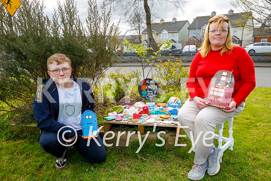 Martina and Jack Brosnan at their rockery of Hope in Spa Road for their local community.