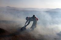A Tibetan woman burns animal dung on her fields on the Qinghai-Tibetan Plateau. China.