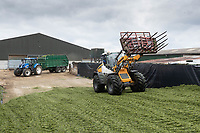 14-5-2021 Rolling silage on a clamp<br /> ©Tim Scrivener Photographer 07850 303986<br />      ....Covering Agriculture In The UK....
