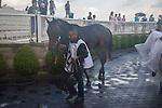 AUG 15 ,2015: Watsdachances,ridden by Joe Bravo,wins the Beverly D. at Arlington International Race Track in Arlington Heights,IL. Kazushi Ishida/ESW/CSM