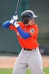 2010 UA Florida (dark orange)