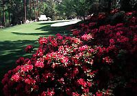 4th April 1999, Augusta GA, USA; The US Masters Golf Course Augusta USA