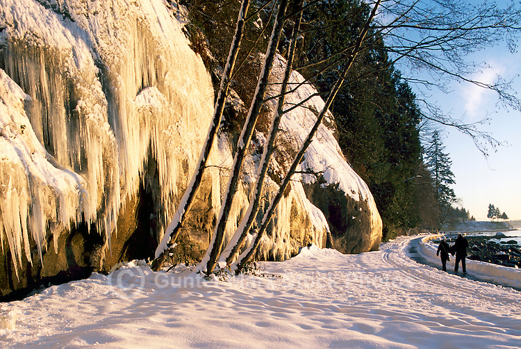 "Stanley Park, Vancouver, BC, British Columbia, Canada, Winter - Icicles hanging on Rock Wall along Snow Covered Stanley Park Seawall at ""English Bay"""