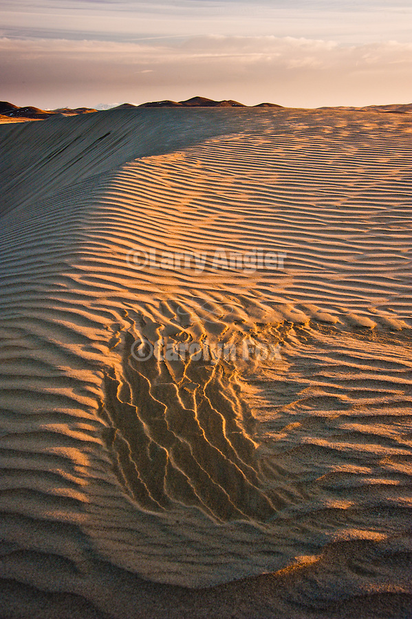 """Workshop """"Dusk at the Dunes"""" presented by Larry Angier and Vasna Wilson at the dunes in Silver State Valley, Shooting the West XXIII photo symposium, Winnemucca, Nev. """"The Nevada Photography Experience"""""""
