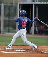 Jonathan Sierra - Chicago Cubs 2019 spring training (Bill Mitchell)