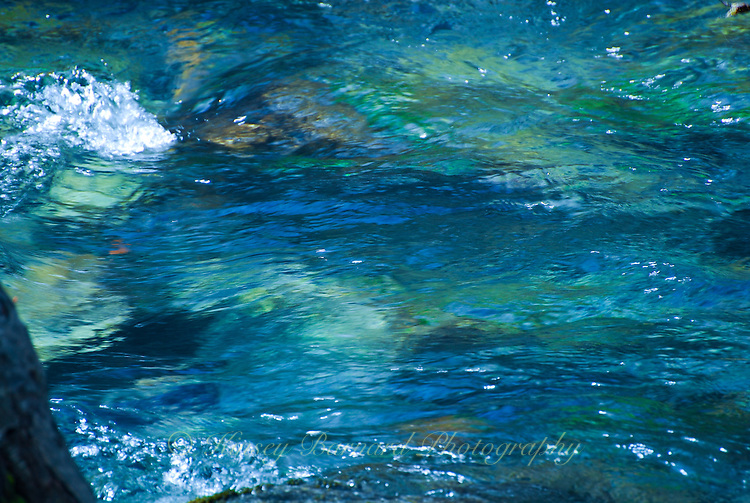 """""""SPALSH!""""<br /> <br /> Patrick Creek, California 24 x 36 signed, original, gallery wrapped wrapped canvas $2,500. Check for availability"""