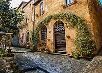 Civita di Bagnoregio building with Arching trellis