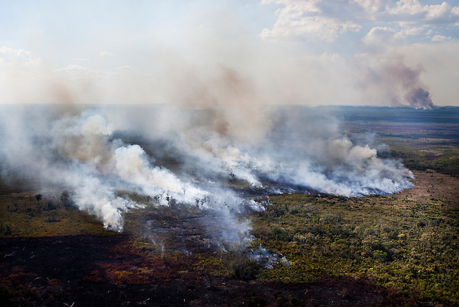 An illegal fire insdie the Mayan Biosphere.