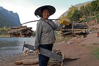 LAOS, village Muang Ngoi at river Nam Ou, a branch of Mekong, Lao Loum woman with firewoods and saw / LAOS, <br />