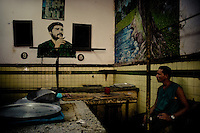 A Cuban man stands in front of a portrait of the revolutionary leader Che Guevara, hung on the wall of a vegetable market, in Havana, Cuba, 16 August 2008. During the Cuban Revolution, an armed rebellion at the end of the 1950s in Cuba, most of the revolutionary leaders started as no-name soldiers fighting in the jungle. Although the revolutionary leaders, after taking over the power, became autocratic rulers holding almost absolute power and putting the opposition in jail, for some reason Cuban people have never stopped to worship Fidel Castro, Che Guevara, Raul Castro and others. Cubans hang their photos and portraits on the wall in homes, shops and working places even they don't have to. The people of Cuba love their heroes.