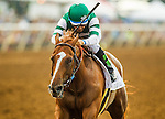 DEL MAR CA - JULY 30: Stellar Wind #2 with Victor Espinoza aboard defeats Beholder #1 and Gary Stevens to win the  Clement L Hirsch Stakes at Del Mar on July 30, 2016 in Del Mar, California. (Photo by Alex Evers/Eclipse Sportswire/Getty Images)