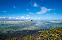 Cuba, Flachwasser bei Cayo Coco, Archipielago de Camagüey, Provinz Ciego de Avila