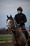 October 30, 2020: Tacitus, trained by trainer William I. Mott, exercises in preparation for the Breeders' Cup Classic at  Keeneland Racetrack in Lexington, Kentucky on October 30, 2020. Alex Evers/Eclipse Sportswire/Breeders Cup