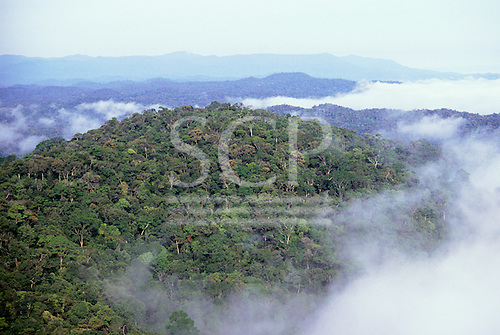 Brazil. Overview of unbroken rainforest on the foothills of the Guyana Shield with low cloud; border between Roraima, Brazil and Guyana.