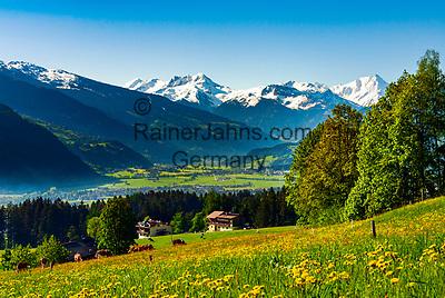 Oesterreich, Tirol, Fruehling im Zillertal, oberhalb von Fuegen: Blick ins Zillertal mit den noch schneebedeckten Gipfeln der Zillertaler Alpen | Austria, Tyrol, springtime at Ziller-Valley, above Fuegen: view into Ziller Valley with still snow covered summits of Ziller-Valley Alps