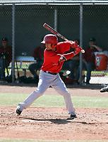 Leonardo Rivas - Los Angeles Angels 2018 spring training (Bill Mitchell)