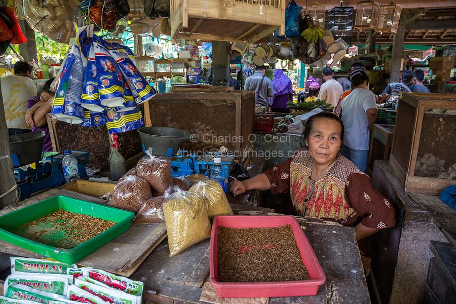 Yogyakarta, Java, Indonesia.  Woman Selling Maggots and other Bird Food in the Bird Market.
