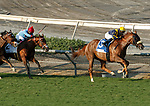 ARCADIA, CA  SEP 26:  #3 United, ridden by Flavien Prat, in the stretch on his way to winning the John Henry Turf Championship (Grade ll) on September 26, 2020 at Santa Anita Park in Arcadia, CA.  (Photo by Casey Phillips/Eclipse Sportswire/CSM.